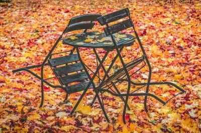 autumn-1770470_960_720